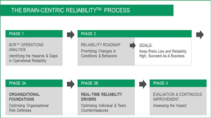 Brain-Centric-Reliability-process
