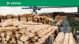 COLUMBIA FOREST PRODUCTS: Leading with Safety
