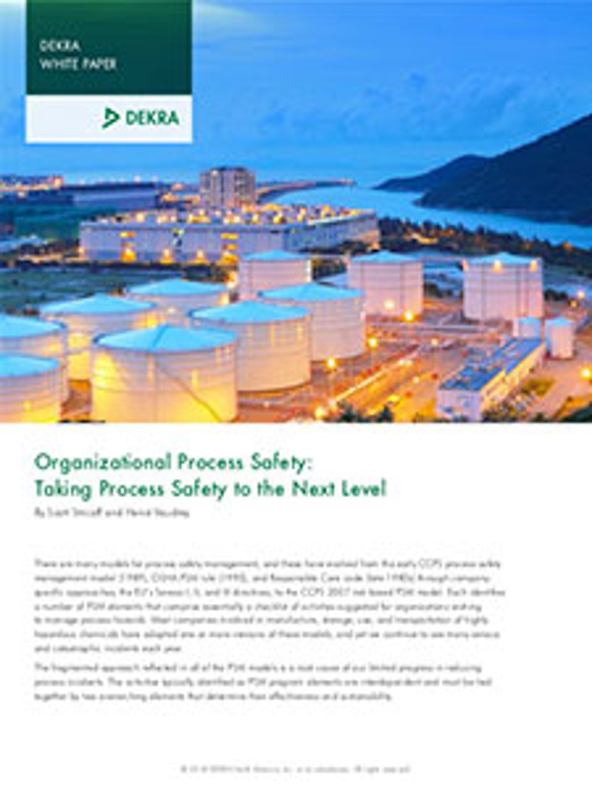 Organizational Process Safety: Taking Process Safety to the Next Level